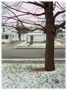 snowmarch2007.jpg