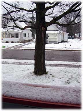 snowapril11.jpg