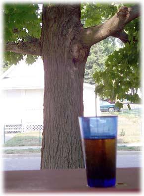 porchwithsquirrel.jpg