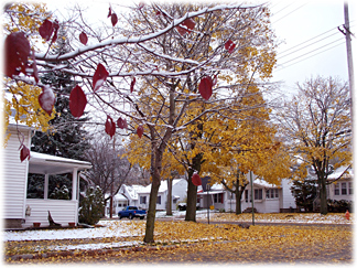 thanksgivingcolors12.jpg