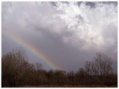 rainbow390.jpg