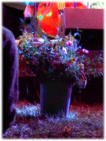 harvestgatheringflowers.jpg