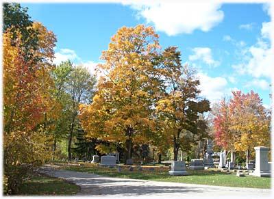 cemetery149sm.jpg