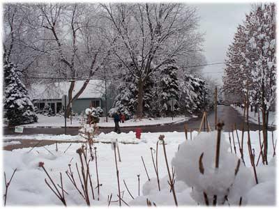 snow2-400.jpg