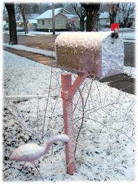 snowbox.jpg