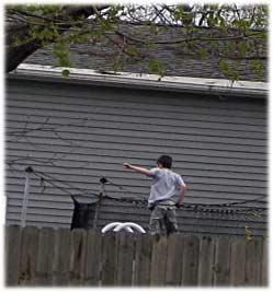 springkidjumpingdetail.jpg
