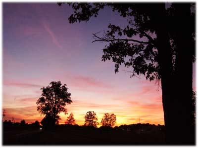 sunsetmsu