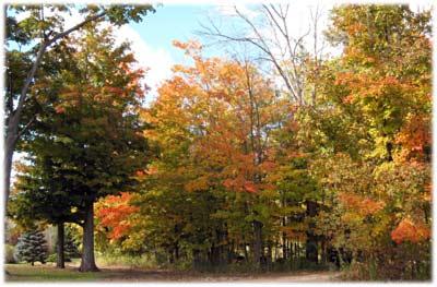 autumncemeteryokemos