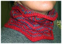 LynnH One-Day NeckWarmer