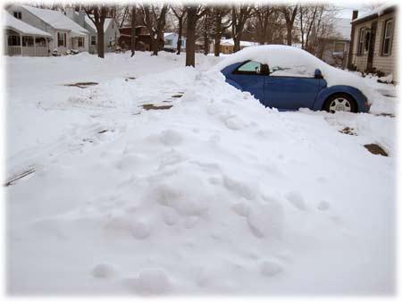 snowdaybugburied