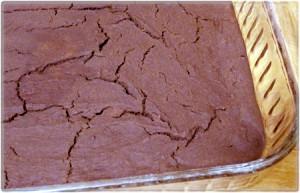 browniesbombed