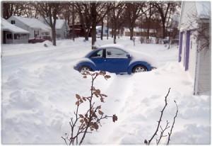 snowdayjoybug