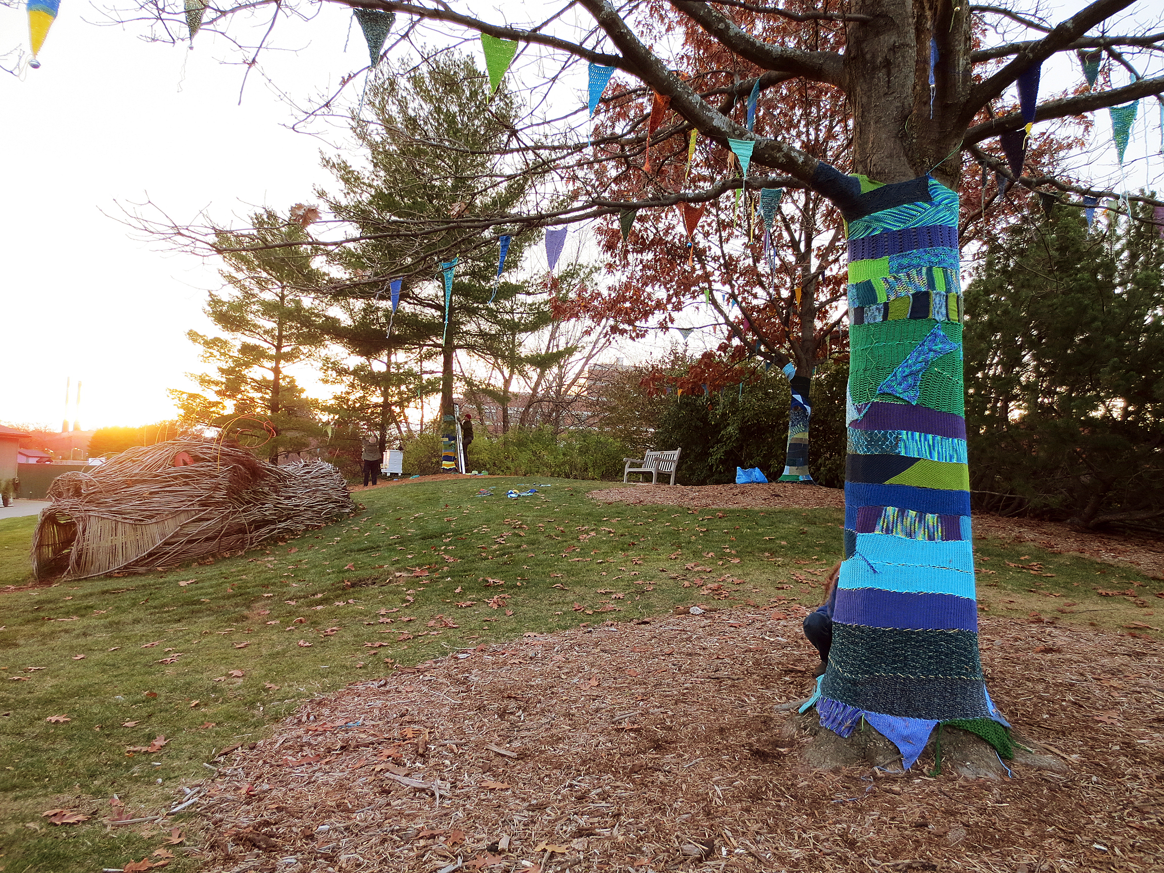 Colorjoy! » Blog Archive » Fun in the Yarn bOMbed Garden Today